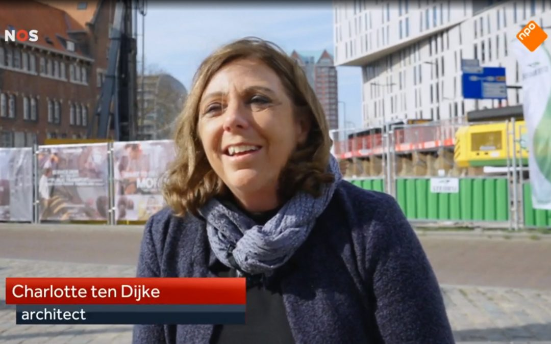 NOS TV News interviews Charlotte ten Dijke #OurDomain